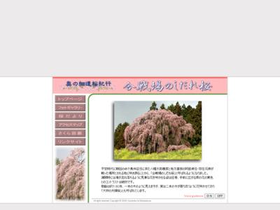 合戦場のしだれ桜 | 奥の細道桜紀行