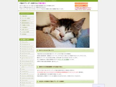 猫を購入するなら、ブリーダーが子猫を直接販売する子猫の窓口で