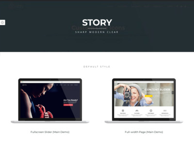 Front Page Switcher | Story WordPress Theme