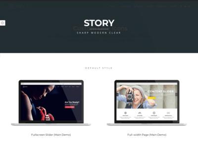 Front Page Switcher | Story WordPress Theme