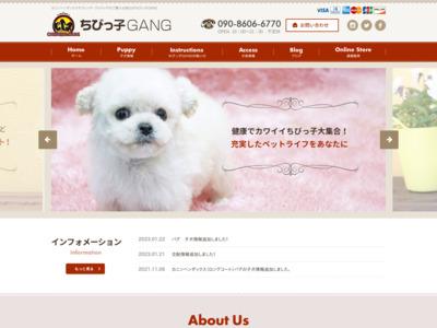 岡山のカニンヘンダックス トイプードル専門犬舎 | ちびっ子GANG