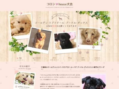 Goldenコロンhouse犬舎