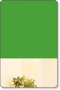 豊島区目白駅から徒歩1分 堀田クリニック|精神科・心療内科・カウンセリング・精神療法専門 東京都