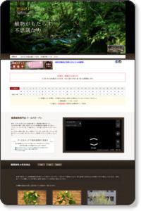 ワールドガーデン|人気の観葉植物なら東京都内最大級の専門店