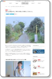 海も山も時間もある。神奈川の葉山で1年暮らしてみました。   PARIS mag パリマグ