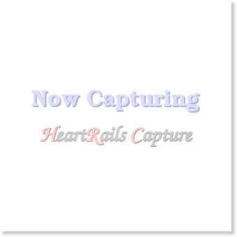 NIPPRIG ニップリグ 2015 ほうき, ヤシの葉
