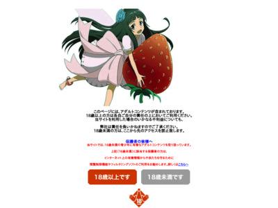 激安 裏・無修正DVD エッチな妖精