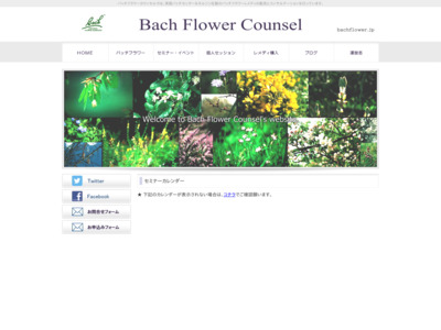 Bach Flower Counsel