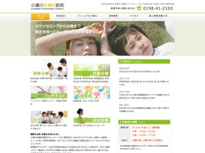 小瀬川皮膚科医院(花巻市)