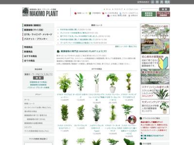 観葉植物の通販 MAKIMO PLANT