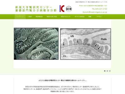 新潟大学医学部腎研究施設分子病態学分野