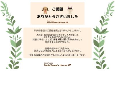 ポチタマの家