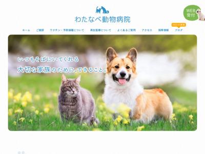 わたなべ動物病院(栄町)