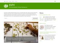 http://avh.chah.org.au/