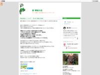 戦姫絶唱シンフォギア 第1話「覚醒の鼓動」のスクリーンショット