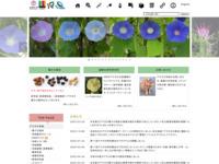 http://mg.biology.kyushu-u.ac.jp/