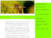 ペニス増大ガイド・スクリーンショット