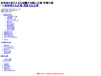 http://www.hamada-sports.com/ichinomiya_chiikibunka/ichi/index.html