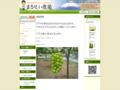 山梨/桃、葡萄、イチゴの【まるせい農園】