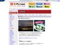 シロイカ/食のみやこ鳥取県/とりネット/鳥取県公式サイト