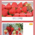 山梨市のイチゴ狩り中島農園