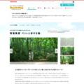 斑尾高原 ペットと歩ける森 | 長野県 | おでかけ情報 | Honda Dog | Honda