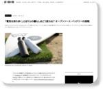 「電気を持ち歩く」とぼくらの暮らしはどう変わる? オープンソース・バッテリーの挑戦 « WIRED.jp
