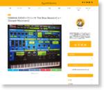 YAMAHA EX5のソフトシンセ The Blue Beastレビュー【Gospel Musicians】 : SynthSonic