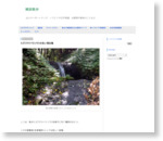 ミズ(ウワバミソウ)の生い茂る滝 - 生活の方法
