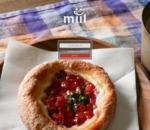 kotala - ミイル(miil)