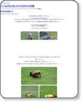 http://riko0228.blog.fc2.com/
