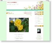 http://kurukurufx.blog.fc2.com/