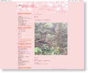 http://blog.livedoor.jp/pertar/
