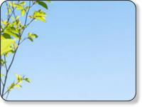 神奈川エコハウス 環境・健康・景色を大切に考える家づくり