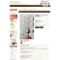 胡蝶蘭の詳細
