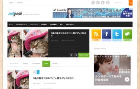 netgeekの媒体資料