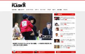 SmartFLASHの媒体資料