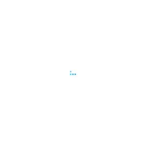 2013.02 若者のクルマ利用~インターネット環境編~