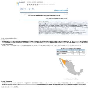 Grupo Mexico社傘下の銅鉱山における銅浸出液流出事故の概要