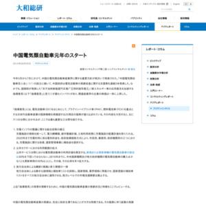中国電気類自動車元年のスタート
