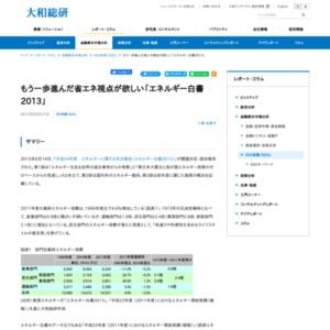 もう一歩進んだ省エネ視点が欲しい「エネルギー白書2013」