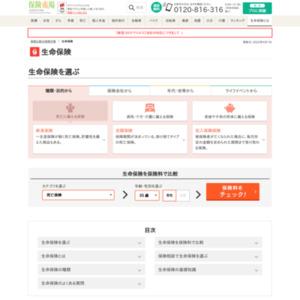 日本における生命保険(個人保険)をまとめたインフォグラフィック