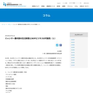 ミャンマー農村部の生活実態とBOPビジネスの可能性(1)