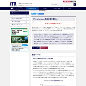 ITR Market View:開発支援市場2013