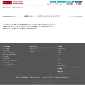 2008年度Webアプリケーション脆弱性検査レポート