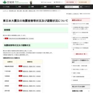 東日本大震災の地震被害等状況及び避難状況について