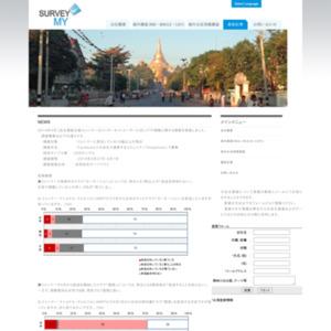 ミャンマー TV視聴に関する調査