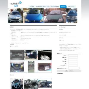 ポーランド 車 写真調査 2013. 4
