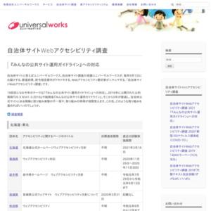 自治体サイトWebアクセシビリティ調査 2009