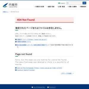 平成24年度の経済動向について(内閣府年央試算)
